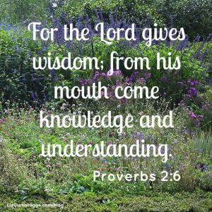 Proverbs On Wisdom