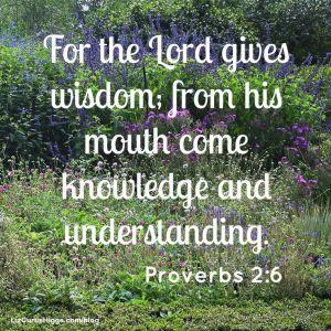 Proverbs On Wisdom