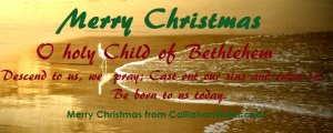 merry_christmas_meme7