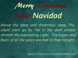 merry_christmas_meme8