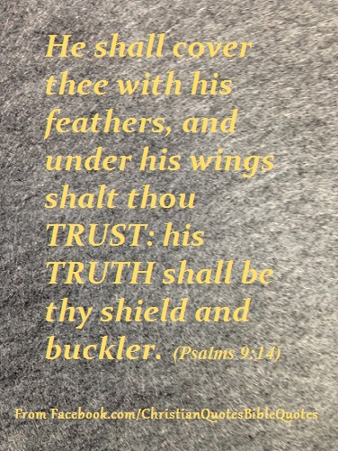 trust_shield