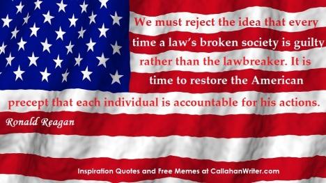 law_broken_meme_flag