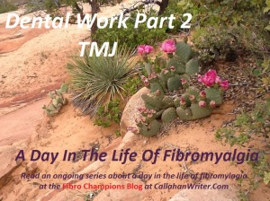 a_day_in_the_life_of_fibromylagia_dental_tmj