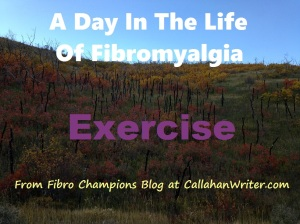 a_day_in_the_life_of_fibromylagia_exercise