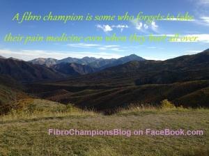 fibro_champions_2